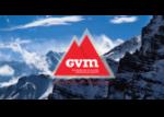 GVM CONSEIL