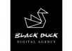 Black Duck Agency