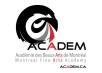 Académie des beaux-arts de Montréal