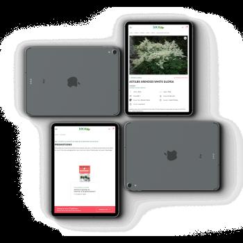 Une plateforme d'achat innovante pour la Pépinière Locas