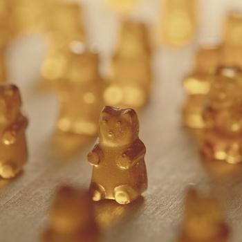 Les bons bonbons: une alternative pour la «deuxième saison des sucres»
