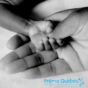 Préma-Québec choisit BFRP