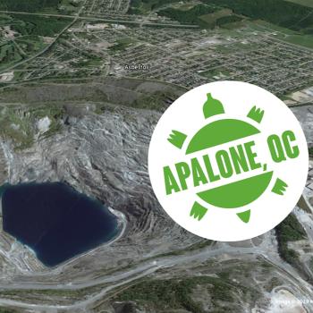 Asbestos retient la suggestion de Greenpeace et Rethink