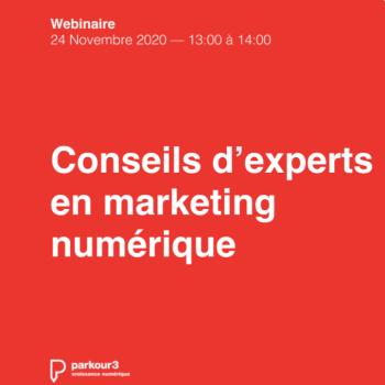 Webinaire Parkour3: des conseils d'experts en marketing numérique