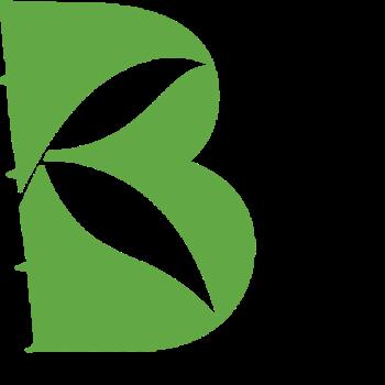 Bambou Communication obtient de nouveaux mandats
